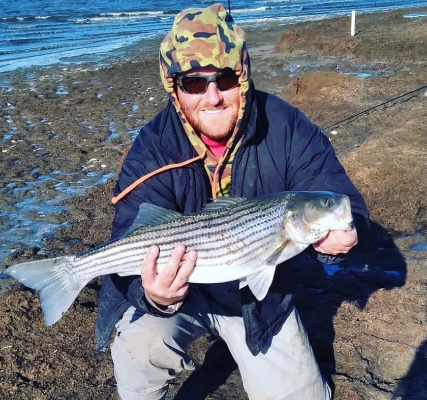 Here's Paul with one of many striped bass he has caught in the past few days.
