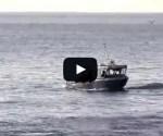 Cray fishing boat, near Kaikoura.