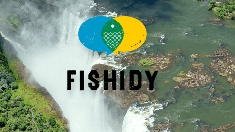 Here's Why Fishidy Really is the Next Big Thing