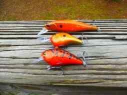 bassfishingcraws2