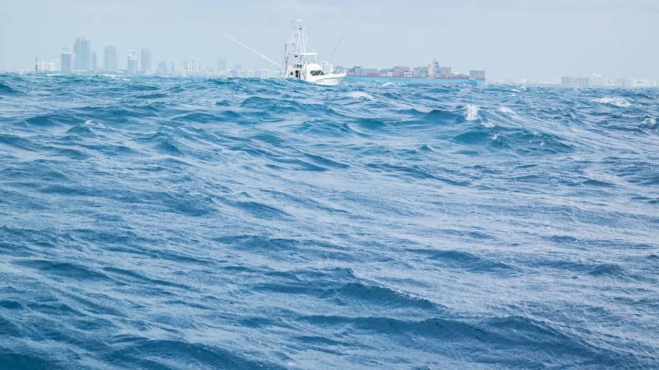 American Sportfishing Association Elects Board of Directors Members