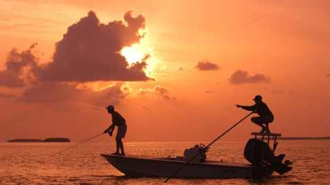 Saltwater Sportfishing Businesses Eligible for Fishery Relief Funds