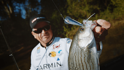 Six Ways to Inject Your Fall and Winter Fishing with a Dose of Reality