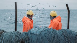 Commercial fishing operations are a major contributor to declining global fish populations.