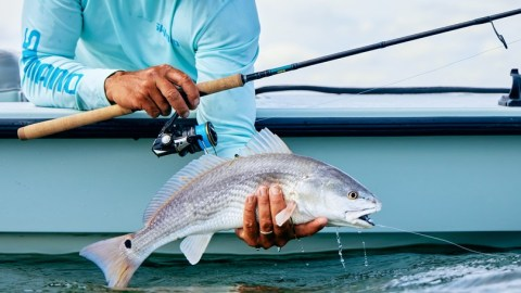 Shimano Sustain Tackles the Toughest Assignments