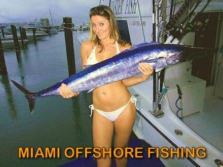 miami offshore fishing