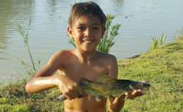 bla-kot-fish-in-thailand