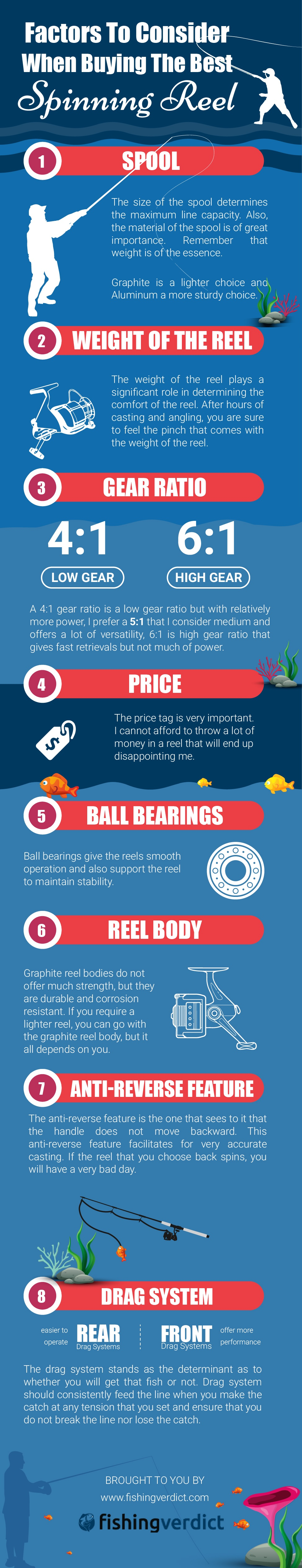 Things To Consider When Buying Polarised Fishing Sunglasses Infographic