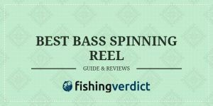 Best Bass Spinning Reel Guide & Review