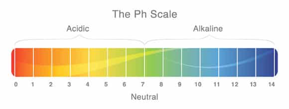 How To Control Your Aquariums PH Level