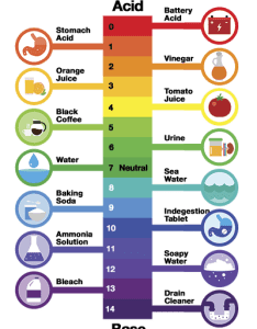 Easy to read aquarium ph scale chart in comparison every day objects also what is and how easily test it your rh fishlab