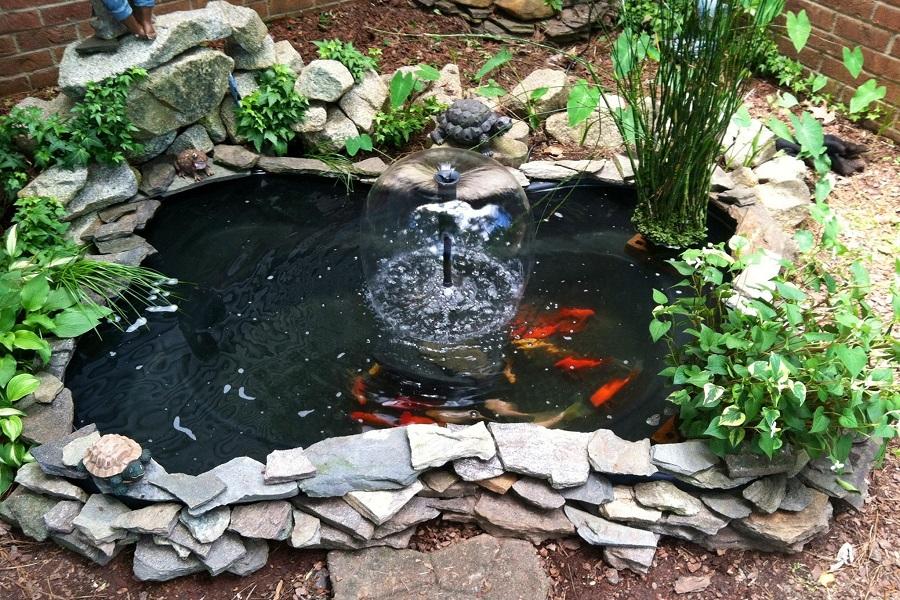 to build a koi pond