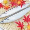 記録的不漁にあえぐ日本の「秋の味覚」サンマ、高値品薄で祭も中止