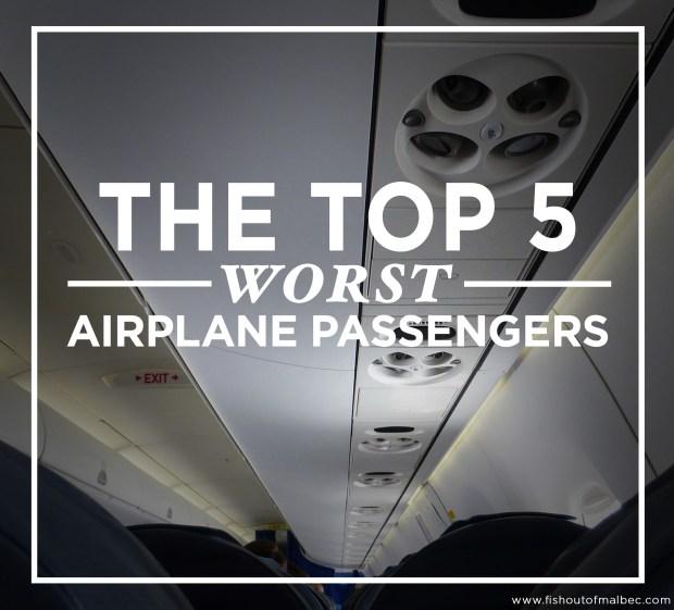 worst airplane passengers