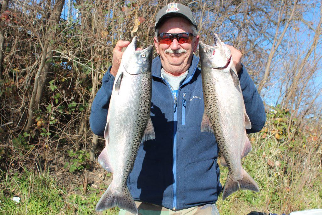 Salmon Season Is Over, Record Steelhead Run Reported at Hatchery