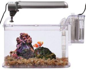 kollercraft tom deco aquarium kit
