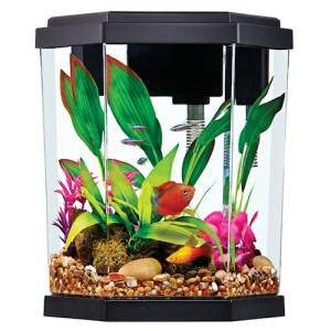top fin 2 gallon intrigue aquarium kit