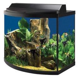 aqueon 36 gallon deluxe aquarium kit