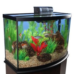 marineland 38 gallon aquarium starter kit