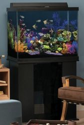 marineland 56 gallon column aquarium ensemble