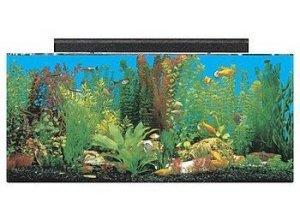seaclear 30 gallon show acrylic aquarium combo set