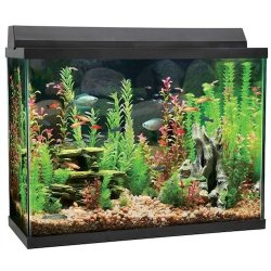 top fin 37 gallon aquarium starter kit