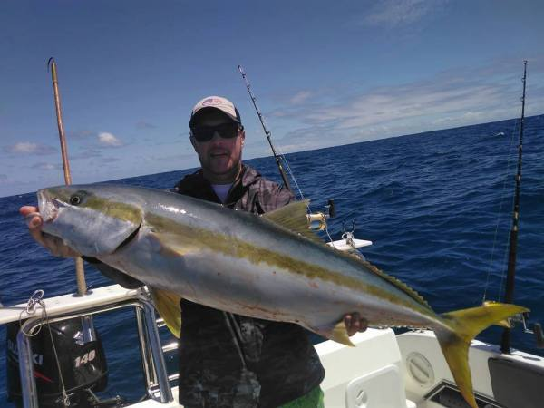 fishing-charter-yellowtail-alphards