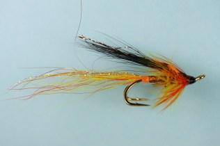copper-raider-2219