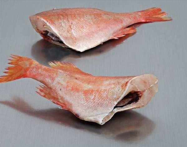 Redfish (biban rosu) file 180-260 g