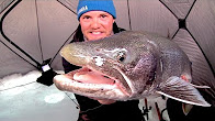 BIG Lake Trout REDEMPTION – Awesome Underwater Footage!