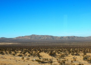 The desert is vast and seemingly endless.