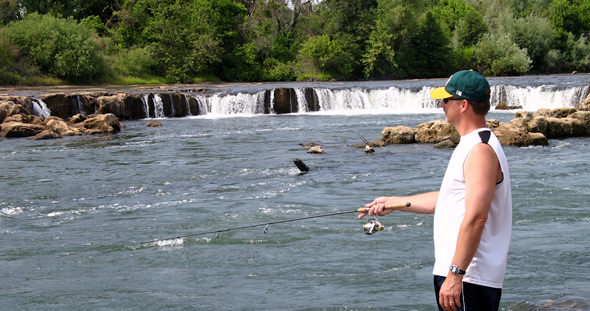 Shad aren't bigs fans of water falls, so fish below anything that creats a barrier!