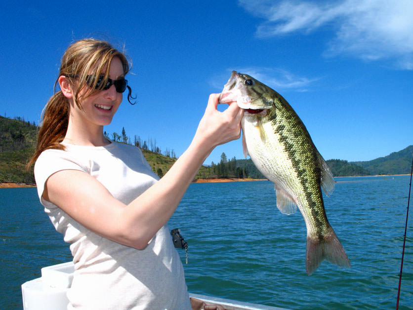 Lake-Shasta-Spotted-Bass