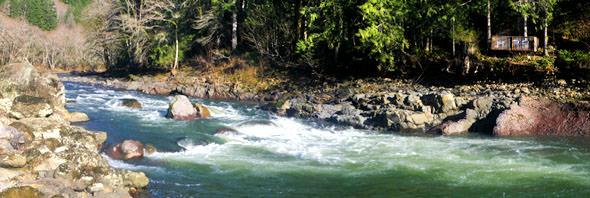 Orgeon Salmon & steelhead river