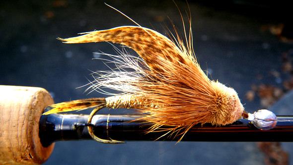 Muddler Minnows + spin gear = Big Trout!