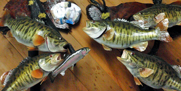 Record Limit of Smallies