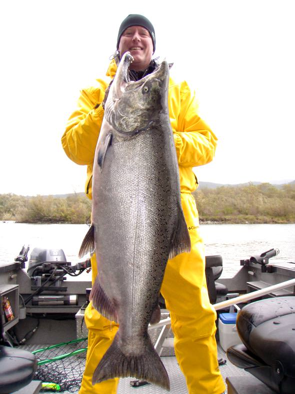 Big King Salmon In The Smith River