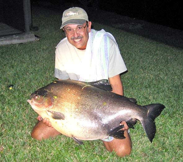 Pending world record for Big fish in a small pond game