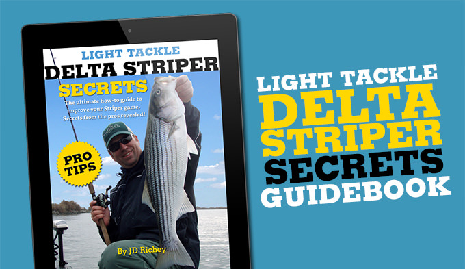 Light Tackle Delta Striper How-to Guide