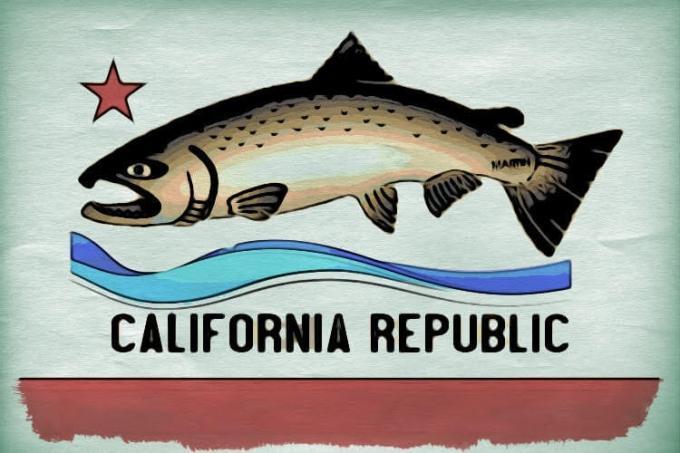 salmon flag