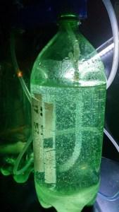 citric-acid-baking-soda-diy-co2-generator-in-use