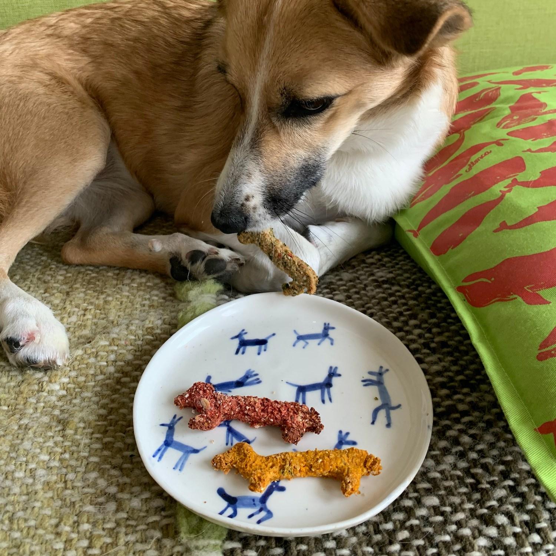 Pies siedzi na kanapie, przed nim leży porcelanowy talerzyk we wzór niebieskich rysunkowych piesków. Na talerzyku leżą dwa ciastka w kształcie jamników.