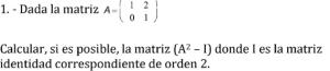 ejercicio de matrices 1