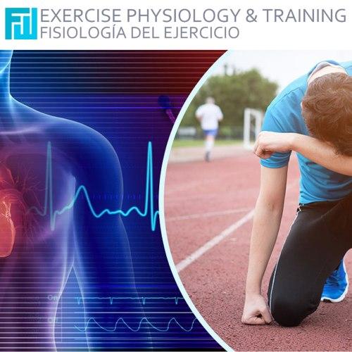 Impacto del ejercicio extremo sobre el sistema cardiovascular