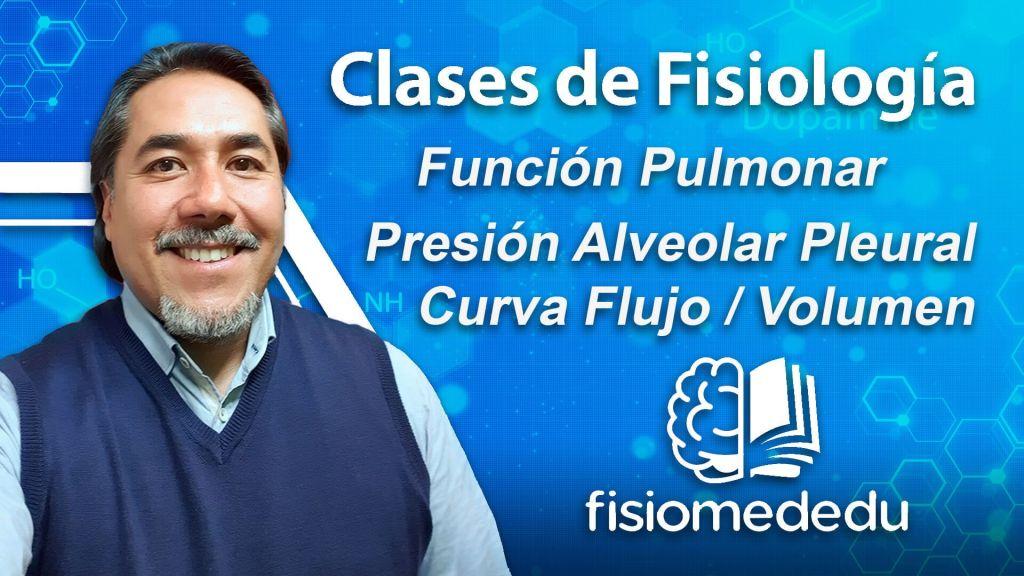 Función pulmonar, curva flujo volumen,