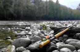 fiskerejser efter Laks, ørred og stør Fiskerejser Fra Vedder