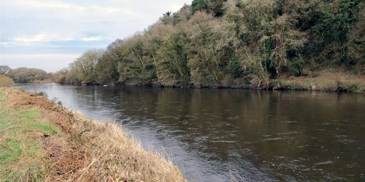 fiskerejser efter Laks, ørred og stør fiskerejse til irland blackstone