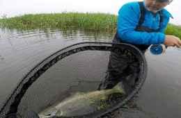 Fiskerejse til Skjern å - Per Pedersen