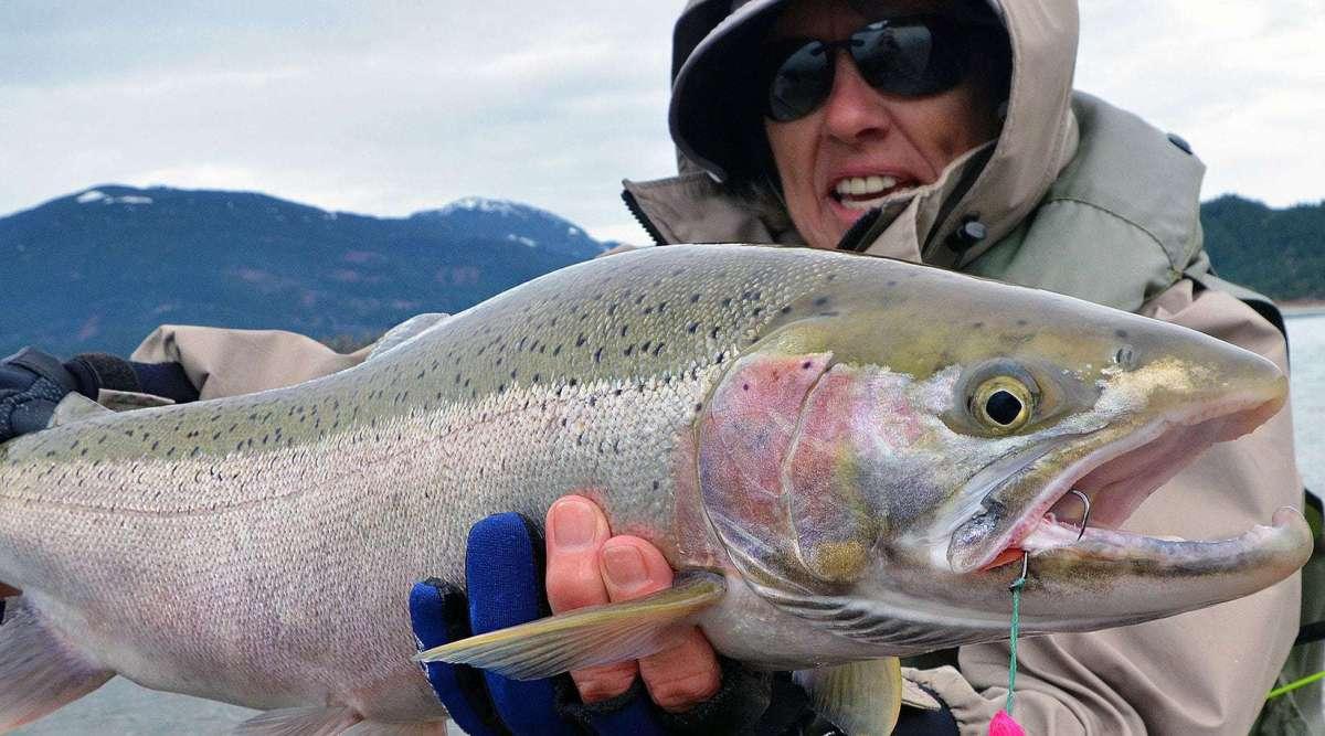 fiskerejse-steelhead-i-chilliwack