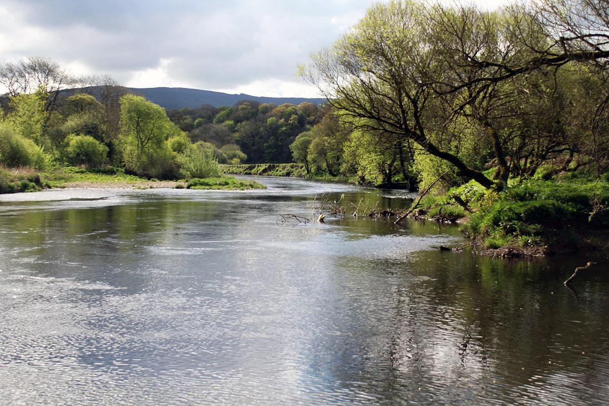 fiskerejser efter Laks, ørred og stør fiskerejse til irland ballincurrig 2
